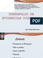 Portafolio Vicente Diaz p