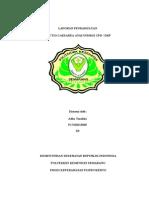 Laporan Pendahuluan Post Sc Indikasi Dkp