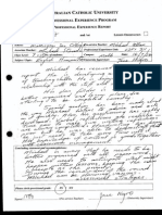 acu professional experience report copy