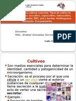 T6-Metod Cultivos Comunes.antibiograma
