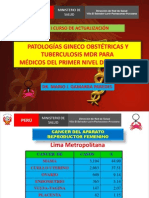 cncerginecolgico-veslpp131003k-131002183309-phpapp02 (1).pdf