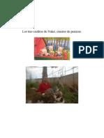 Los Tres Cerditos de Nules, Distopía de Angelillo de Uixó