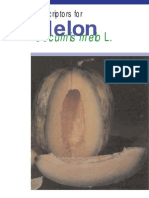 Deskriptor Melon