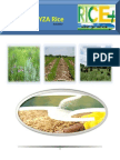 18th May,2015 Daily Exclusive ORYZA Rice E_Newsletter by Riceplus Magazine