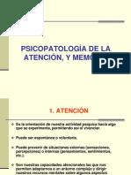 05 Trastornos de La Atencion y Memoria PDF