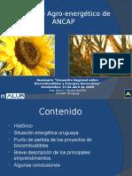 Biocombustibles- ANCAP -Grupo Montevideo_97