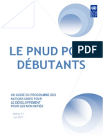 UNDP for Beginners Fr