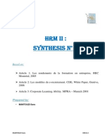 synthese HRM