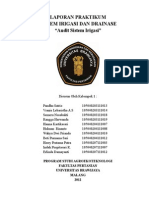 Audit irigasi