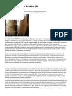 Article   Tratamiento Keratina (4)