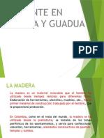 Madera Diapositivas