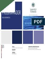 IP Analista Programador.pdf