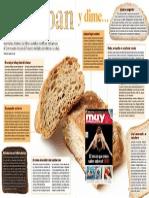 Infografía Sobre El Pan