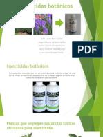 Insecticidas botánicos