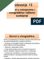 korovi_predavanje_13