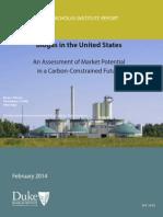 Duke Biogas Market Study