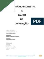 Inventário Florestal_laudo de Avaliacao_exemplo de Um Inventario Pronto