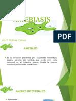 AMEBIASIS LENOC.pptx