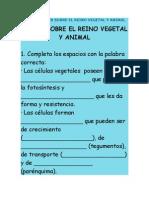 TALLER SOBRE EL REINO VEGETAL Y ANIMAL.doc