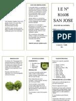 Características de la alcachofa.docx