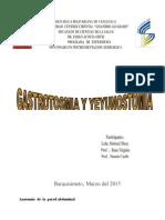 Informe Gastrostomia y Yeyunostomia