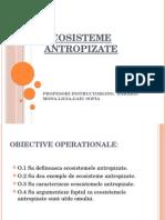 0_ec.antropizate (1).pptx