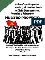 La Asamblea Constituyente Autoconvocada y El Nuevo Chile Final
