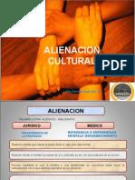 80128477 Alineacion Cultural
