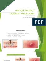 Inflamacion Aguda y Cambios Vasculares