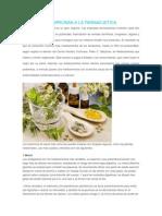 Plantas Que Arruinan a La Farmacuetica