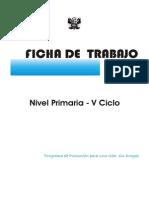 5to Ciclo_primaria.pdf