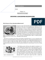 mushroom-growers-handbook-1-mushworld-com-chapter-11.pdf