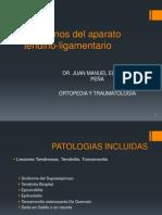 Trastornos Del Aparato Tendino-ligamentario