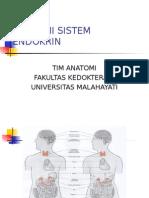 Anatomi Sistem Endokrin