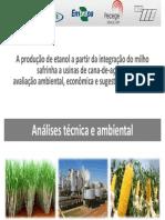 Usina Flex Embrapa CTBE USP AnaliseTecnica Ambiental