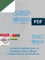 2014 Peru OPS Inicit Prev Ca Ocup JRodriguezG.pdf