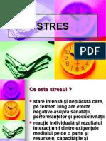 8.Stres Profesional