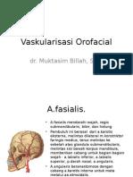 vaskularisasi orofacial.ppt
