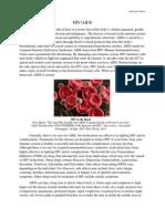 hiv & aids essay
