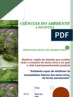 CAP.2_-_CIENCIAS_DO_AMBIENTE_-_2011.1.pdf