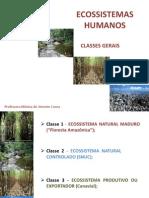 CAP.8_-_CIENCIAS_DO_AMBIENTE_-_2011.1.pdf