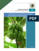 Monografia_Platano.pdf
