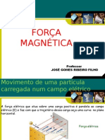 Forca Magnetica