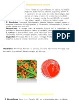 Fichas Bacterias 1