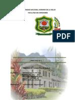 Universidad Nacional Agraria de La Selva (2)