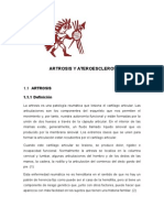ARTROSIS-ARTEROESCLEROSIS-1