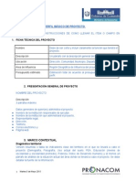 EstructuradelPerfilesdeProyectos