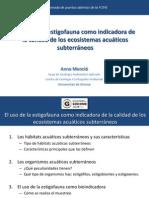 """""""El uso de la estigofauna como indicadora de la calidad de los ecosistemas acuáticos subterráneos"""""""