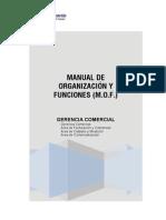 Plan_13771_manual de Organizacion y Funciones (Parte4)_2009