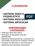 CLASE_2_PPT_FUNDAMENTOS_BIOLOGICOS_PRIMEROS_AUXILIOS_2.0 (1)